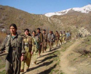 PKK xwe wek tevgera Kurdistana Başûr radigihîne